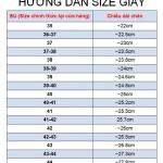 site_giay/huong-dan-size-giay-2_(1).png