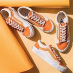 vans-old-skool-cam.jpg