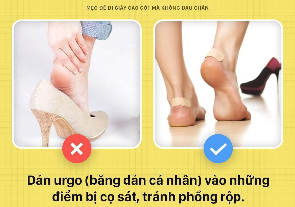Hướng dẫn cách chọn size giày Adidas, Converse, Vans, Puma, Nike